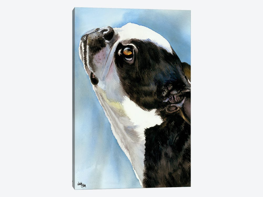 Here's Looking at You - Boston Terrier by Judith Stein 1-piece Art Print