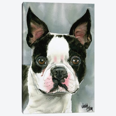 American Gentleman - Boston Terrier 3-Piece Canvas #JDI7} by Judith Stein Canvas Art Print