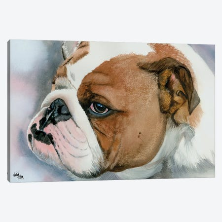 Hey Bulldog - English Bulldog Canvas Print #JDI80} by Judith Stein Canvas Wall Art