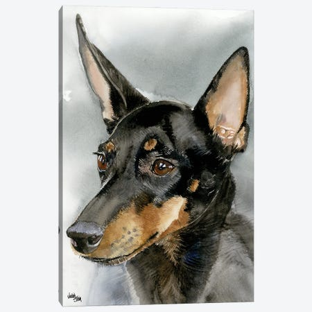 High Spirits - Toy Manchester Terrier Canvas Print #JDI81} by Judith Stein Canvas Artwork