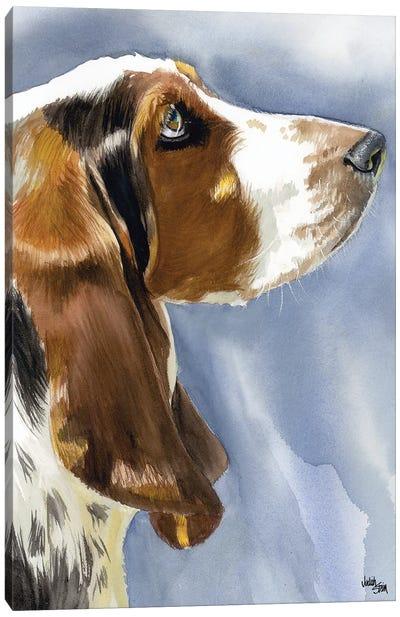 Hush Puppy Dog - Basset Hound Canvas Art Print