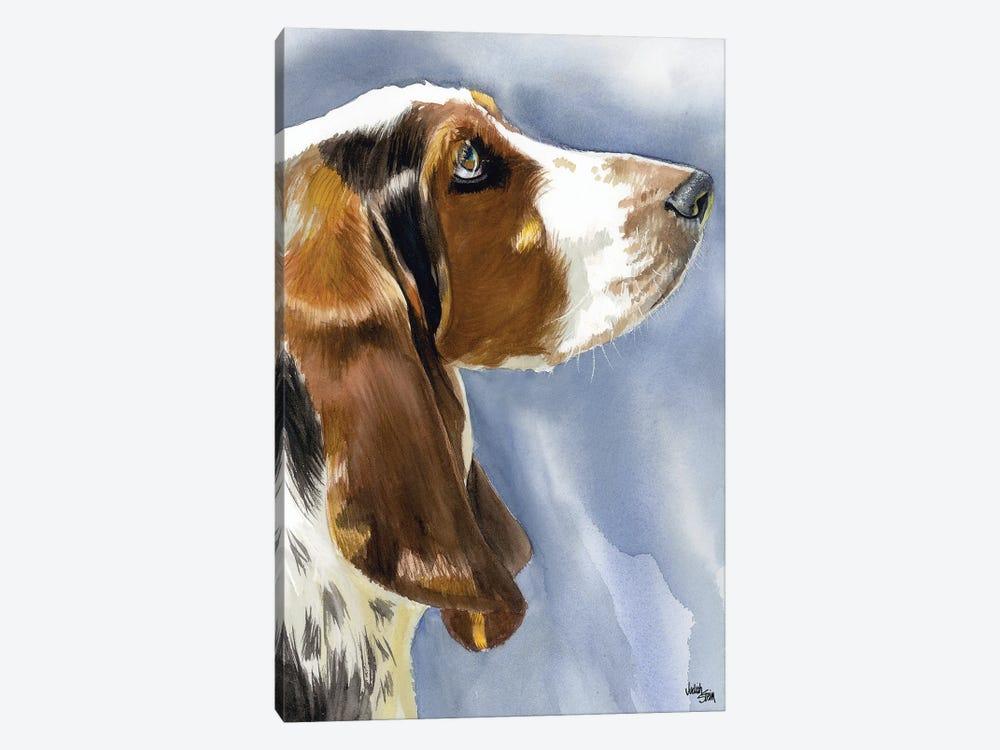 Hush Puppy Dog Basset Hound Canvas Print By Judith Stein Icanvas