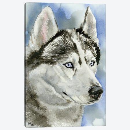 Ice Blue - Siberian Husky Dog Canvas Print #JDI84} by Judith Stein Canvas Art Print