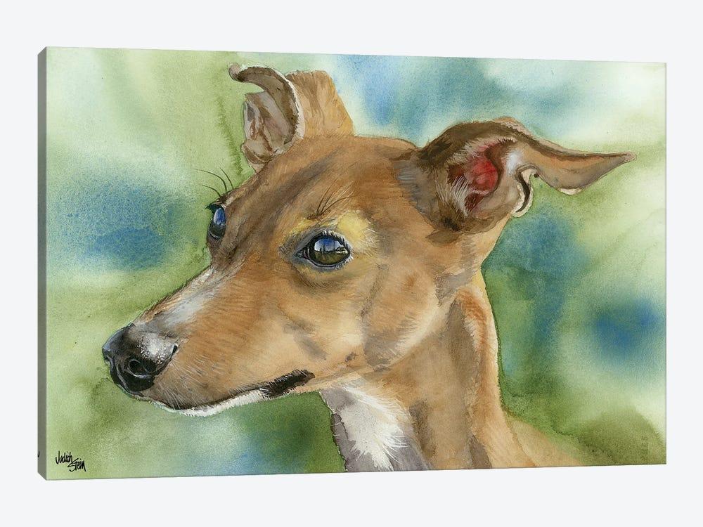 Iggy Pop - Italian Greyhound by Judith Stein 1-piece Canvas Art
