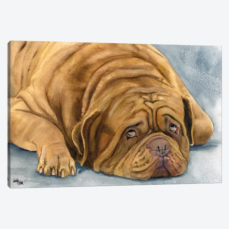 In Dogue We Trust - Dogue de Bordeaux Canvas Print #JDI86} by Judith Stein Canvas Print