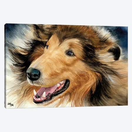 In the Rough - Collie Canvas Print #JDI87} by Judith Stein Canvas Print