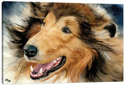 In the Rough - Collie Canvas Art Print
