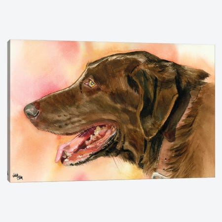 Lady Godiva - Chocolate Lab Canvas Print #JDI93} by Judith Stein Canvas Print