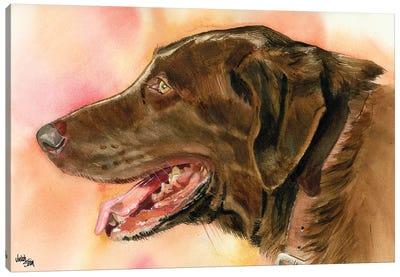 Lady Godiva - Chocolate Lab Canvas Art Print