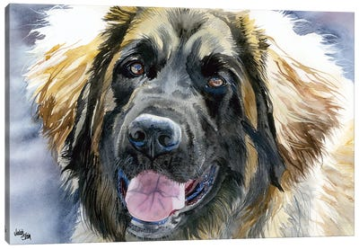 Leo - Leonberger Dog Canvas Art Print