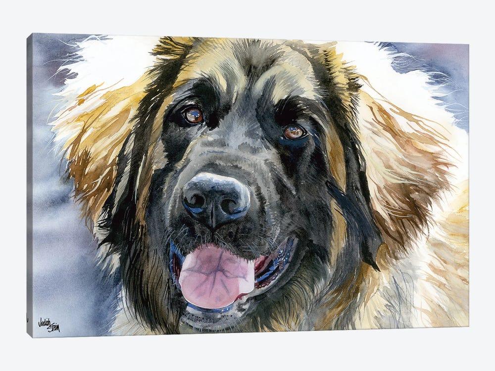 Leo - Leonberger Dog by Judith Stein 1-piece Canvas Art
