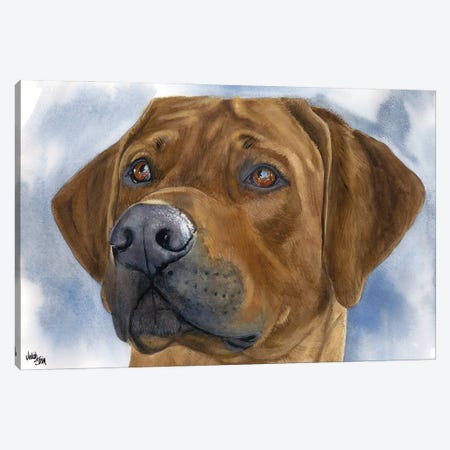 Lion Dog - Rhodesian Ridgeback Canvas Print #JDI96} by Judith Stein Canvas Wall Art