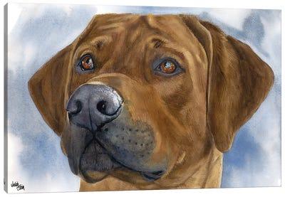 Lion Dog - Rhodesian Ridgeback Canvas Art Print