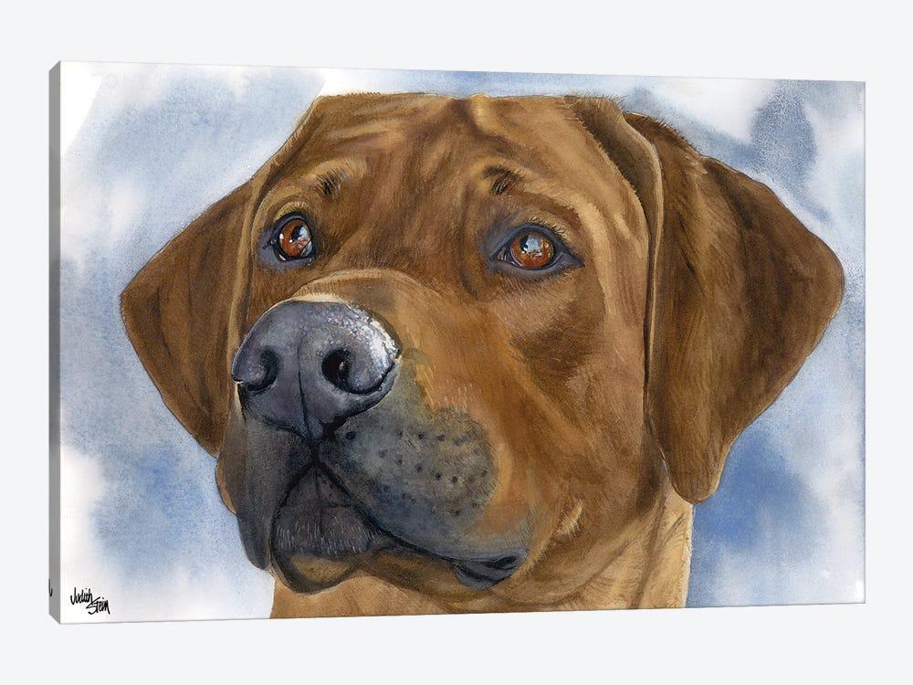 Lion Dog - Rhodesian Ridgeback by Judith Stein 1-piece Canvas Art
