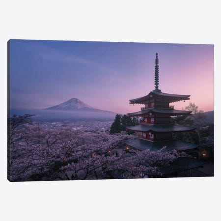 Mt Fuji Sakura Canvas Print #JDL17} by Javier de la Torre Canvas Art Print