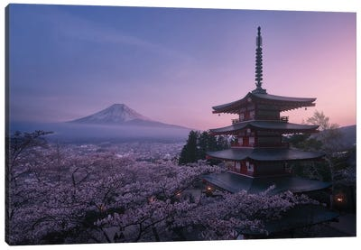Mt Fuji Sakura Canvas Art Print