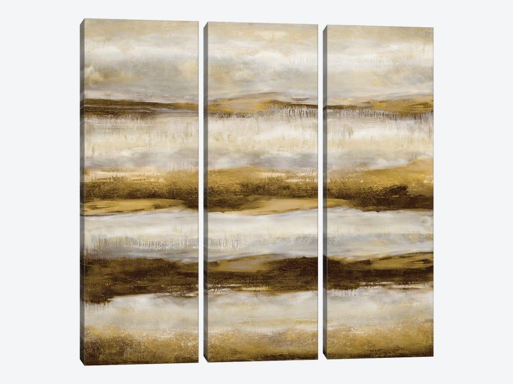 Linear Motion In Golden by Jaden Blake 3-piece Canvas Wall Art