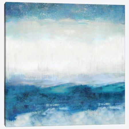 Aqua Motion Canvas Print #JDN2} by Jaden Blake Canvas Print