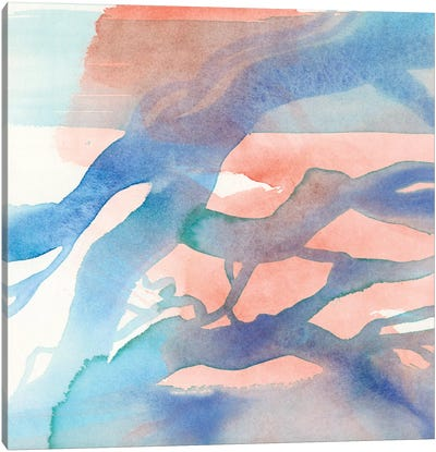 Suffusion I Canvas Art Print