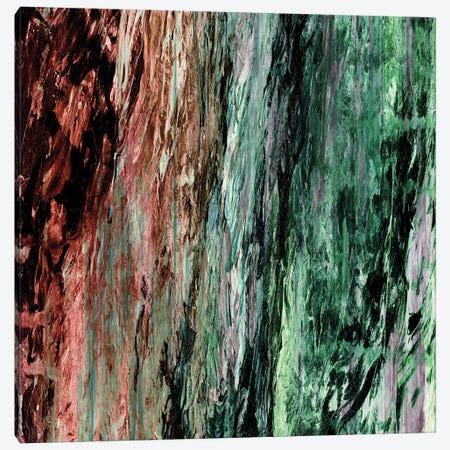 Rainbow Bark I Canvas Print #JDS164} by Julia Di Sano Canvas Wall Art