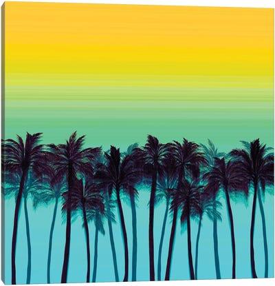 Beach Palms I Bold Canvas Art Print