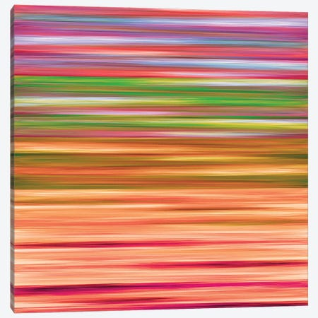 Rainbow Flow 4, Colorful Ombre Stripes Abstract Canvas Print #JDS208} by Julia Di Sano Canvas Art