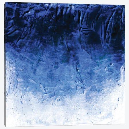 Beneath The Veil I, Blue Inverted Bold Canvas Print #JDS253} by Julia Di Sano Canvas Art Print