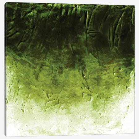 Beneath The Veil II, Green Inverted Bold Canvas Print #JDS254} by Julia Di Sano Canvas Artwork