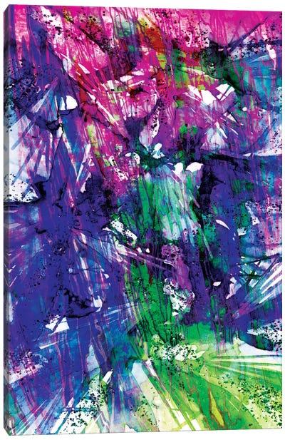 Birds Of Prey - Twilight Spark Canvas Print #JDS25