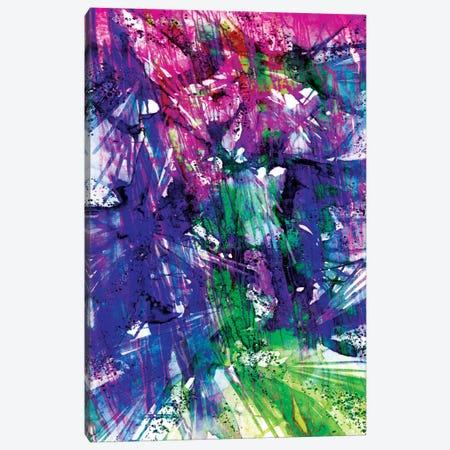 Birds Of Prey - Twilight Spark Canvas Print #JDS25} by Julia Di Sano Art Print