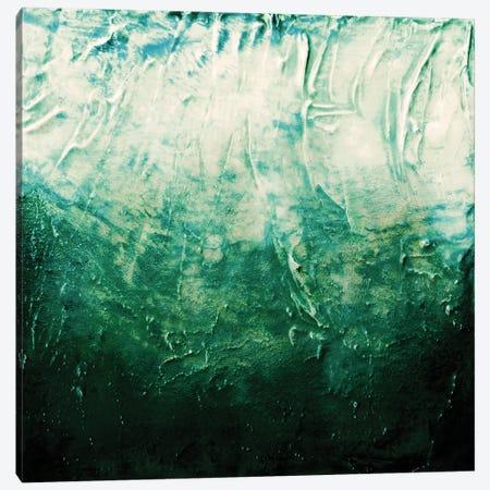 Beneath The Veil V, Dark Emerald Green Bold Canvas Print #JDS260} by Julia Di Sano Canvas Art