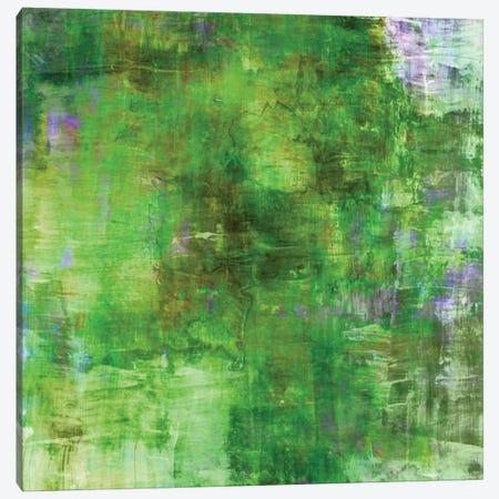 In The Meadows Canvas Print #JDS46} by Julia Di Sano Canvas Art Print