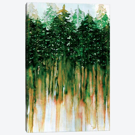 Northwest Vibes IV Canvas Print #JDS63} by Julia Di Sano Canvas Art