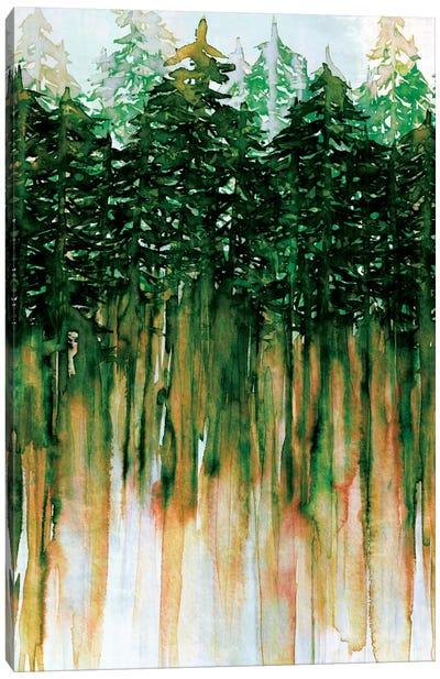 Northwest Vibes IV Canvas Art Print