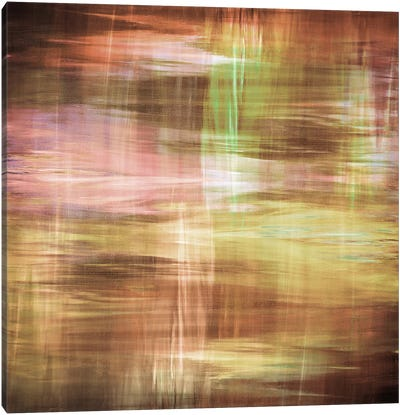 Blurry Vision V Canvas Art Print