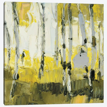 Birch Grove Canvas Print #JDV18} by Julie Devine Canvas Artwork