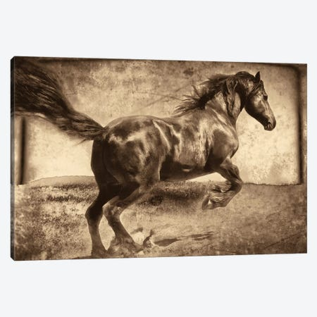 Free Spirit Canvas Print #JEB1} by Jennifer Broussard Canvas Wall Art