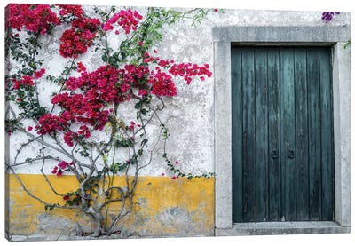 Portugal, Obidos. Beautiful bougainvillea blooming in the town Canvas Art Print