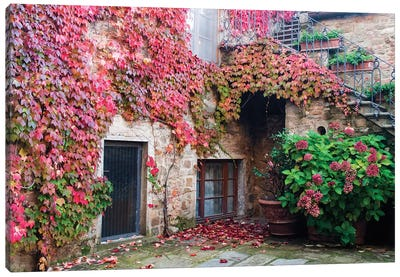 Ivy-Covered Building, Castello di Volpaia, Italy Canvas Art Print