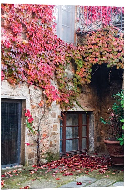 Ivy-Covered Building, Castello di Volpaia, Italy Canvas Print #JEG1