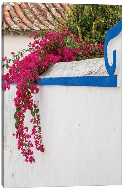 Portugal, Obidos. Beautiful bougainvillea blooming in the town of Obidos, Portugal. Canvas Art Print