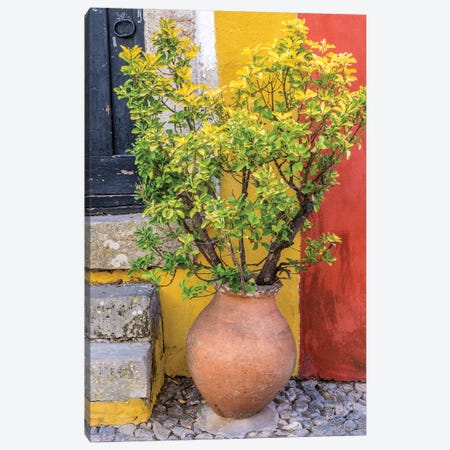 Portugal, Obidos. Potted plant in front of colorful entrance to a home in the hill town of Obidos. Canvas Print #JEG24} by Julie Eggers Canvas Artwork
