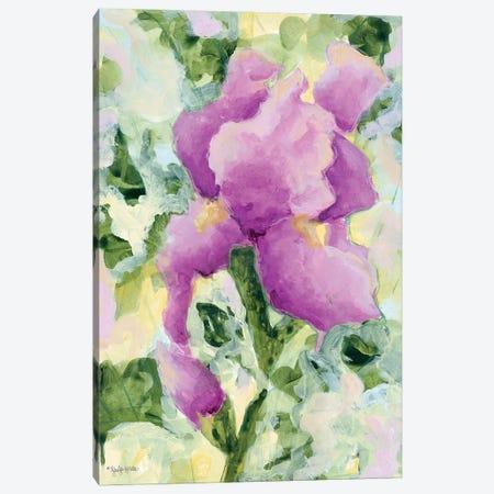 Purple Iris Canvas Print #JEH33} by Jennifer Holden Canvas Art Print