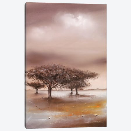 Resting Place I Canvas Print #JEN15} by Jan Eelse Noordhuis Canvas Artwork