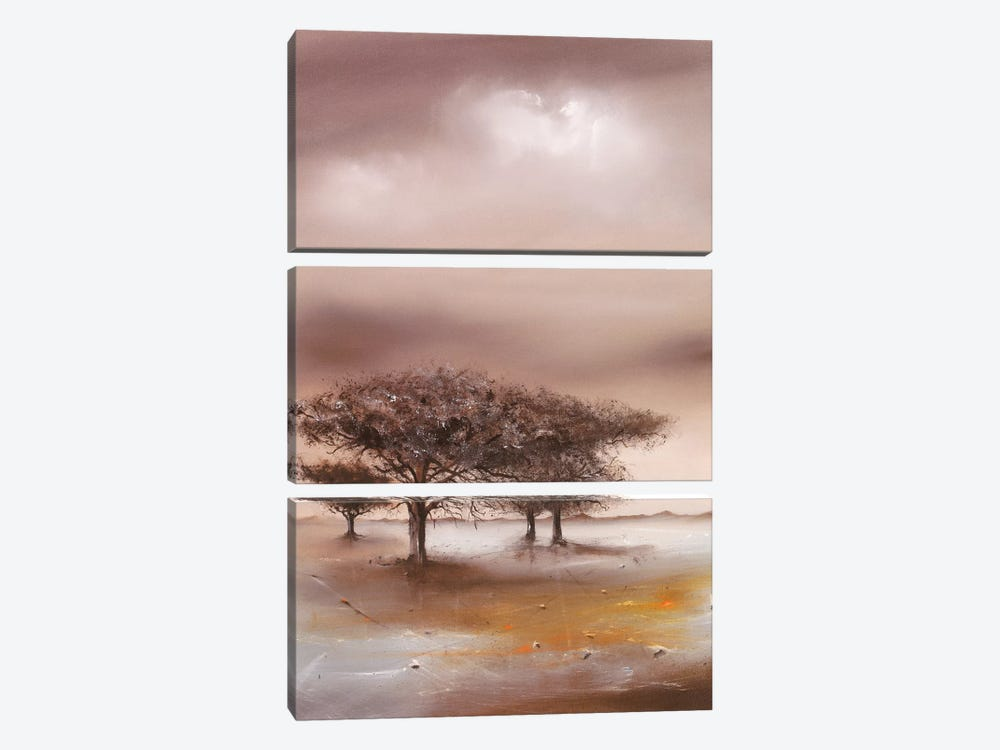 Resting Place I by Jan Eelse Noordhuis 3-piece Canvas Wall Art
