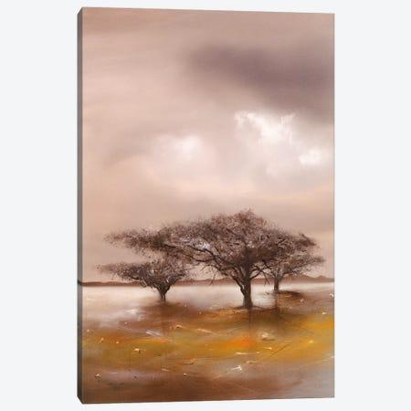 Resting Place II 3-Piece Canvas #JEN16} by Jan Eelse Noordhuis Canvas Art
