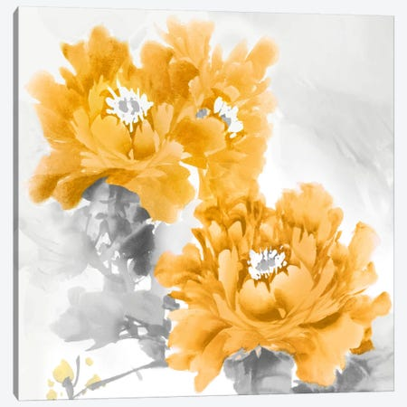 Flower Bloom In Mandarin II Canvas Print #JES12} by Jesse Stevens Canvas Artwork