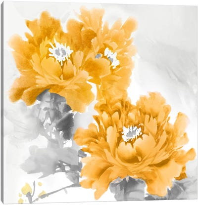 Flower Bloom In Mandarin II Canvas Art Print