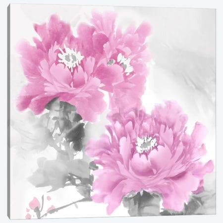 Flower Bloom In Pink II Canvas Print #JES14} by Jesse Stevens Canvas Art Print