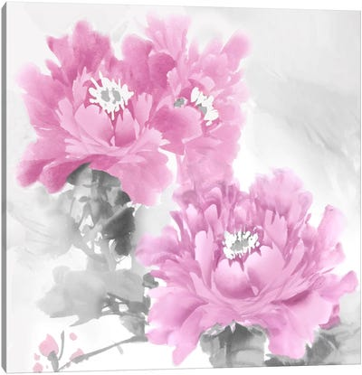 Flower Bloom In Pink II Canvas Art Print